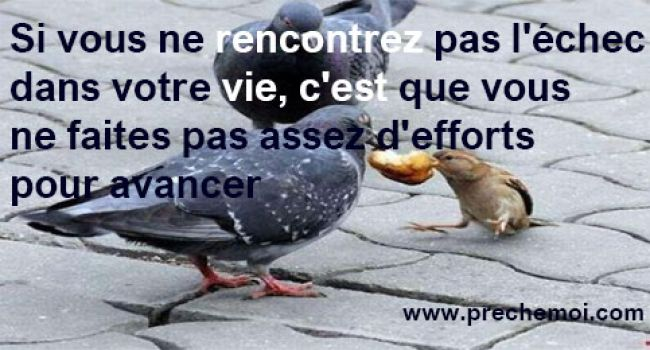 N'abandonnez Jamais ! - Never Give up !